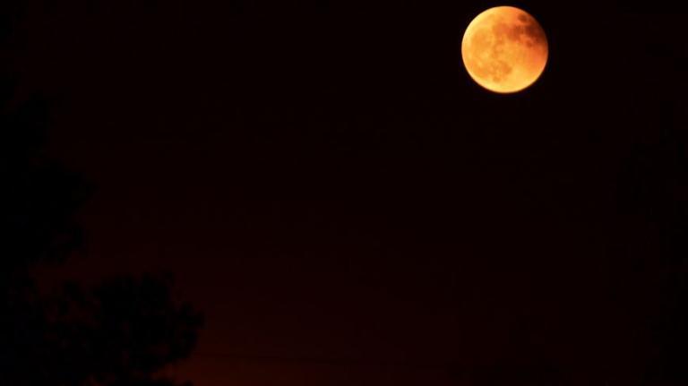 full moon in Bodhgaya