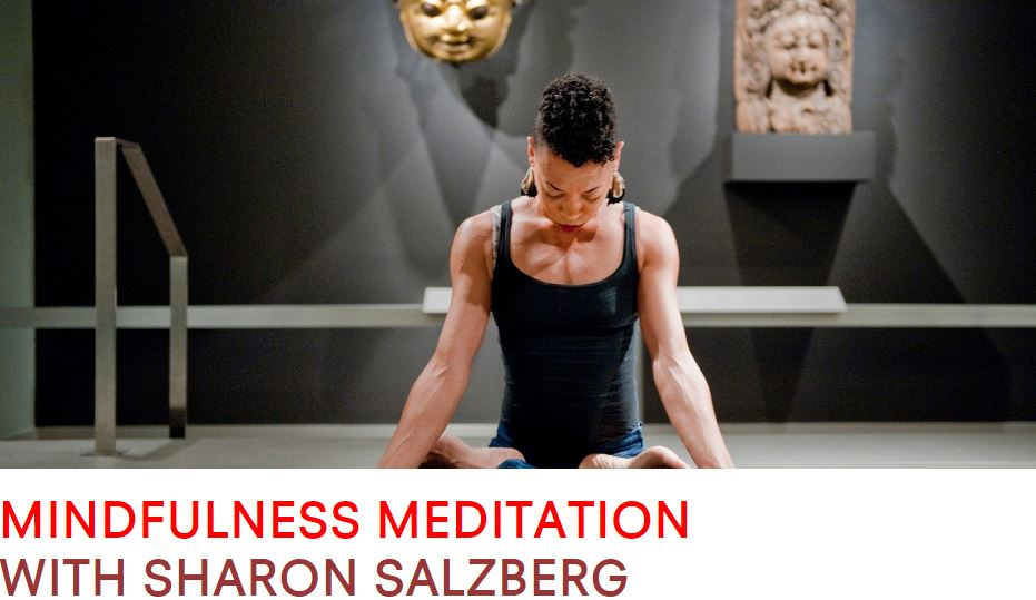 Rubin-salzberg-meditation for artists