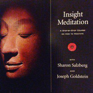 Insight Meditation Salzberg and Goldstein