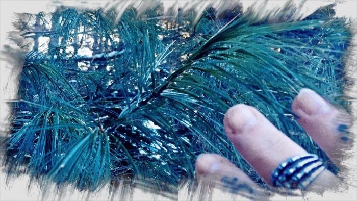 The Pines of Cernunnos