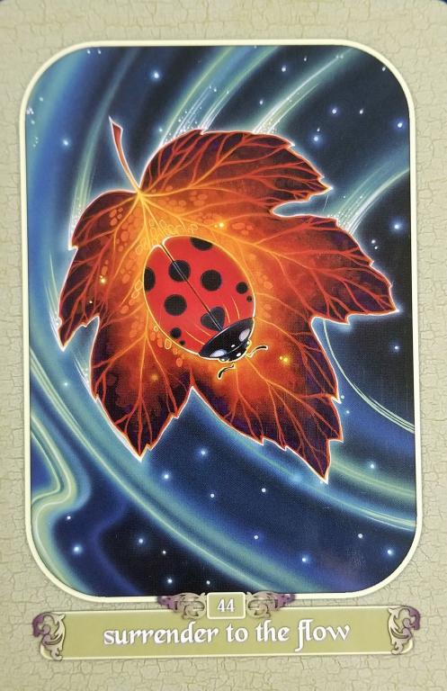 a ladybug floating on a river, a leaf as her boat