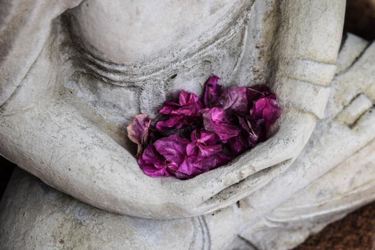 Close up of a buddha statue's hands with flower petal offerings in the clasped palms.