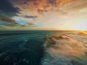 Ocean Spray - Dirk Dallas (cc) 2015.