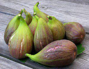 9 big figs. Photo by Badly Drawn Dad (cc) 2009.