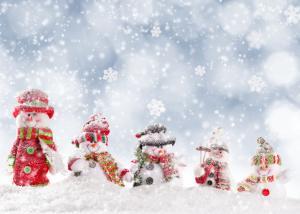Snow Beings in Falling Snow Vision