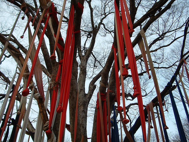 A tree covered in prayer streamers.