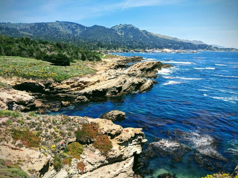 Looking out over the ocean at Point Lobos, Carmel, CA