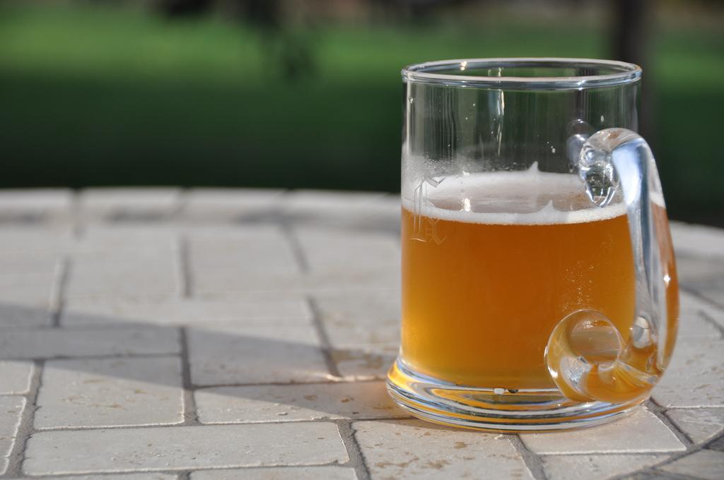 beer mug photo