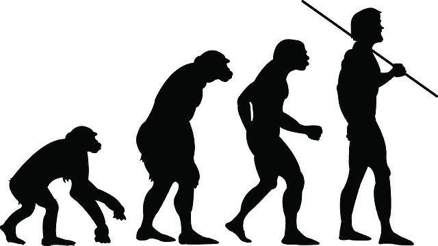 Arizona science standards evolution