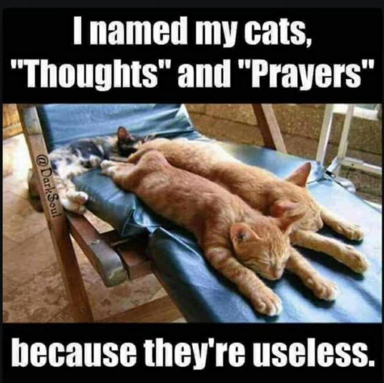 cats prayer religion