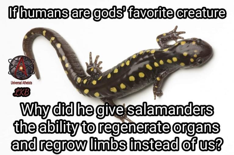 god bible longevity humans animals