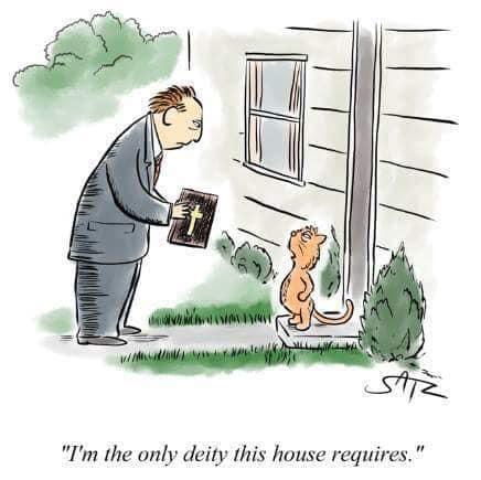 humor cartoons cats gods atheism