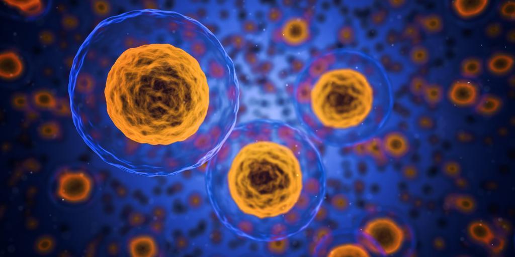 Cells (CC0 via pixabay)