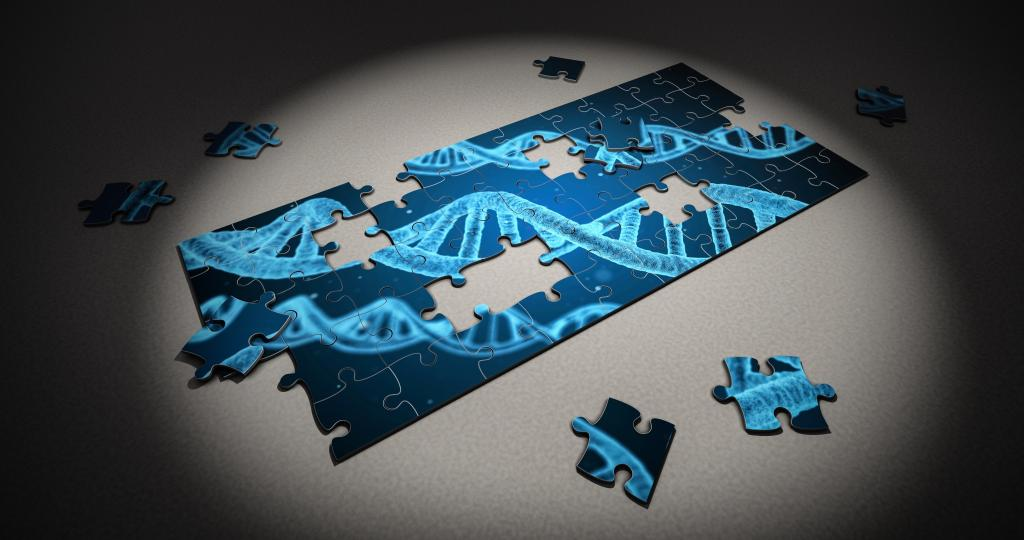 Genetic Puzzle (CC0 via pixabay)