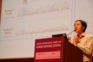 He Jiankui describing the two babies he edited the DNA of