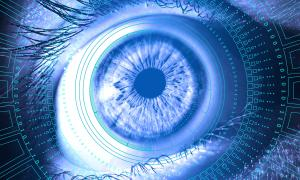 Eye with digital information