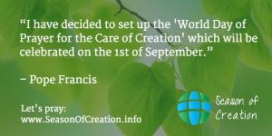 Pope Francis announces World Day of Prayer for Creation.