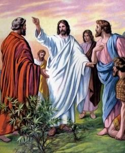 Jesus, pointing to the road, and the disciples, looking like they don't believe in the power that can heal the sick through them.