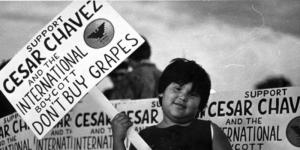 "A protester and protest sign: ""Support Cesar Chavez and the International boycott. Don't buy grapes."