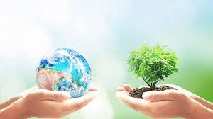 One pair of hands gently cradles the earth. Another does the same for a tree.