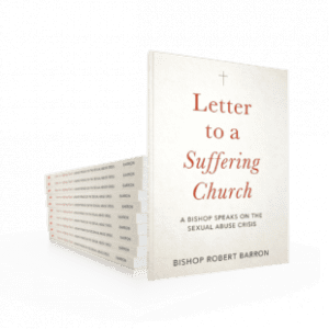 """A stack of copies of the """"Letter"""" by Bishop barron props up one that is standing."""
