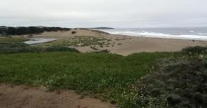 sonoma-coast-bodega-bay