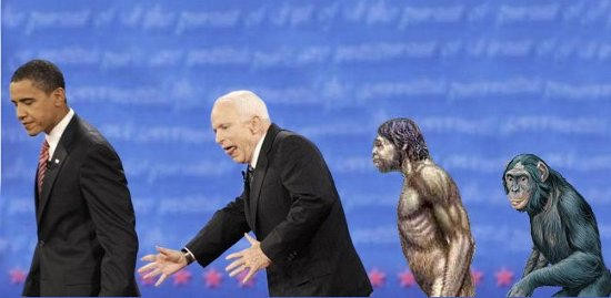mccain_evolution