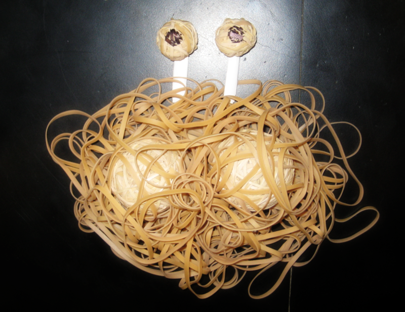 Flying Spaghetti Monster Rubber