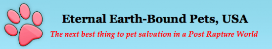 Eternal Earth-Bound Pets Never Had Any Clients, Says Owner