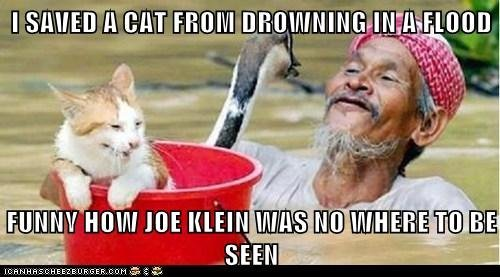 Klein meme cat flood