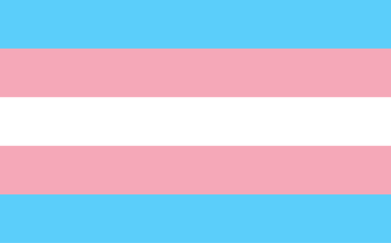 Ban on Transgender Military Service Will End July 1