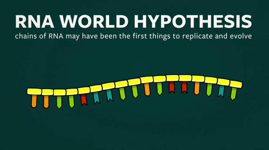 RNAHypothesisWorld