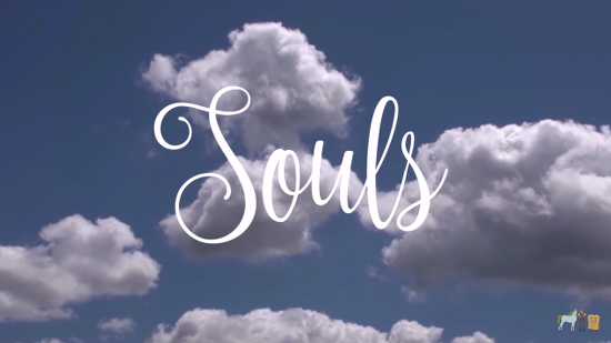 SoulsPeach
