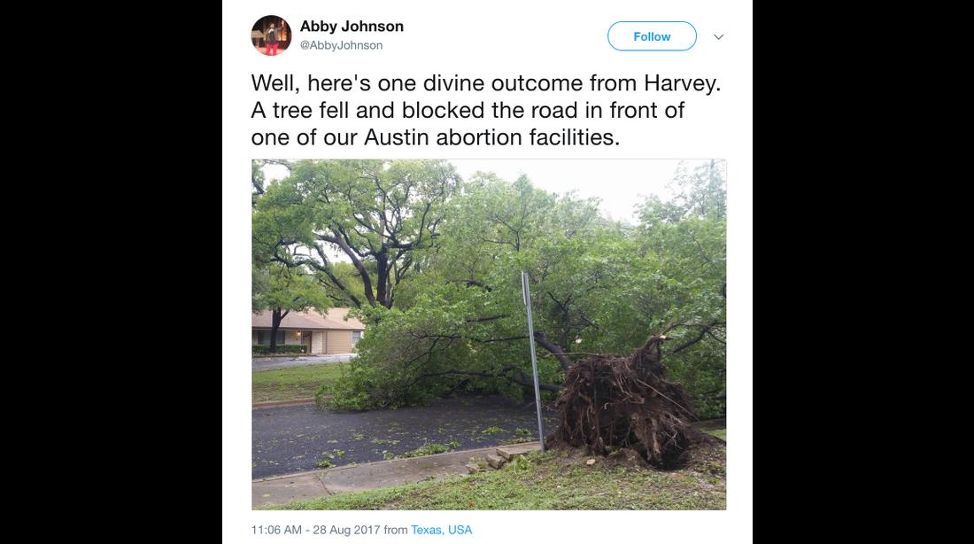 TreeTexasHarvey