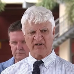 Australian Official Won't Support Gay Marriage Because of Crocodile Attacks