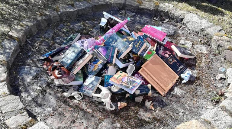 Catholic Priests in Poland Burn Harry Potter Books to Eradicate Evil