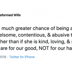 """Christian Mom: To Avoid Domestic Abuse, Wives Shouldn't Be So """"Quarrelsome"""""""