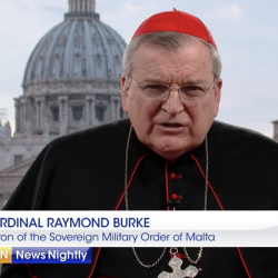 "Catholic Cardinal: Churches Should Be Open Since They're ""Essential"" Services"
