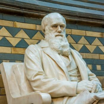 """Ken Ham Calls on """"Cancel Culture"""" to Scrub Darwin (and Evolution) from Science"""