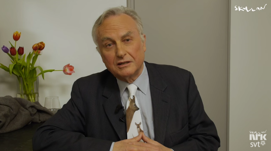 Richard Dawkins Quickly Debunks Popular Reasons for God's Existence